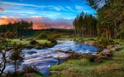река, лес, берег, вечер, закат, зеленые холмы, Юго-Западная Англия, графство Девон, национальный парк, Дартмур