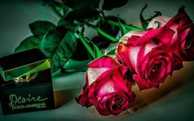 цветы, розы, флакон, духи