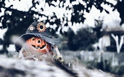 Хеллоуин, лес, тыква, halloween, pumpkins