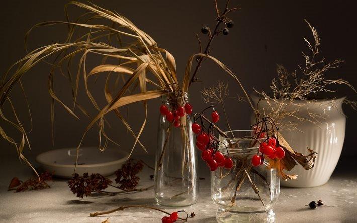 натюрморт, ваза, банки, трава, ветки, ягоды