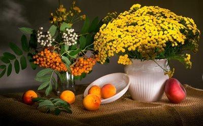натюрморт, ваза, ветки, рябина, ягоды, цветы, пижма, тарелка, фрукты, персик, абрикосы