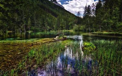 Австрия, лето, горы, лес, озеро, Европа