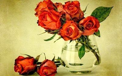ваза, цветы, розы, букет