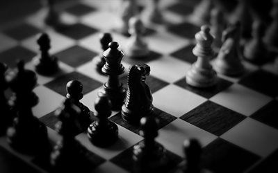 Шахматы, доска, конь, ферзь, пешка, шахи