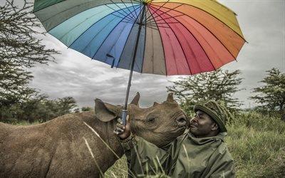 Смотритель, Заповедник, Кения, Белый носорог