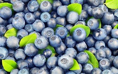 черника, ягоды, фиолетовые ягоды, ягоды черники, чорниця, ягоди, фіолетові ягоди, ягоди чорниці