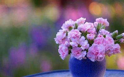 цветы, ваза, гвоздики