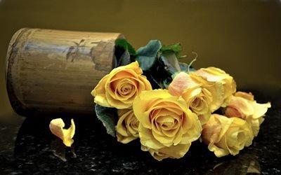 цветы, кашпо, розы, лепестки