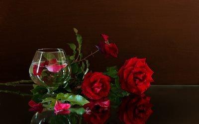 цветы, розы, бокал