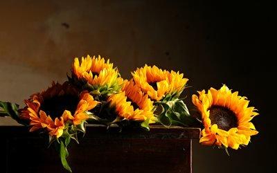 тумбочка, цветы, подсолнухи