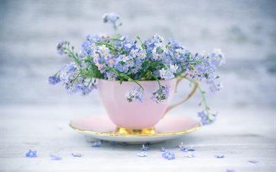 чашка, блюдце, цветы, незабудки