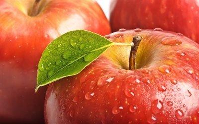 фрукты, листок, красное, капли, яблоко, макро