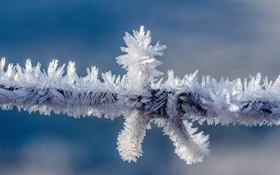 иней, формирования кристалла, зимой, колючая проволока, провод, природа
