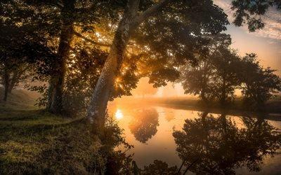 Осень, Рассвет, Река, Туман, Деревья, Sanrise, Autumn, Northamptonshire, England