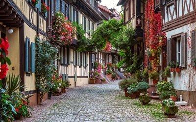 Генгенбах, цветы, улица, Германия, мостовая, дома, город