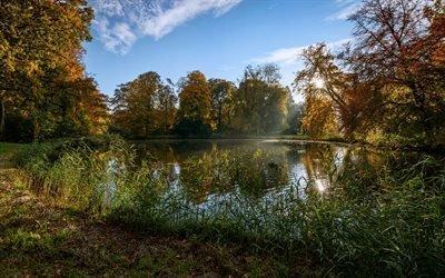 природа, осень, деревья, листья, пруд, растительность, свет, небо, облака, отражение