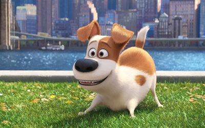 Тайная жизнь домашних животных, The Secret Life of Pets, 2016, мультфильм, комедия