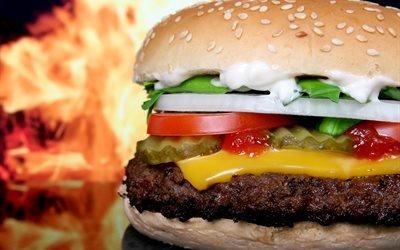 сыр, помидоры, гамбургер, овощи, лук, перец, фаст-фуд, салат
