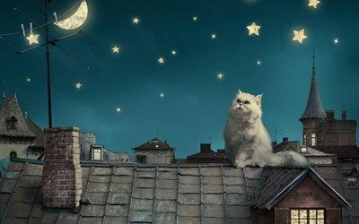 Крыша, Кошка, Ночь, Луна