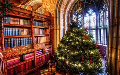 библиотека, комната, интерьер, шкафы, книги, арки, окна, витражи, ёлка, новый год, праздник, подарки, коробки
