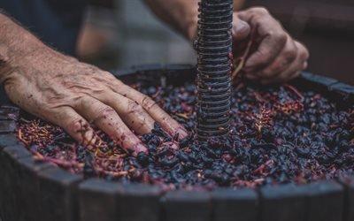 Виноград, Дубовая бочка, Пресс