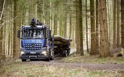 Мерседес-Бенц, лесовоз, Mercedes-Benz, Arocs 2658L
